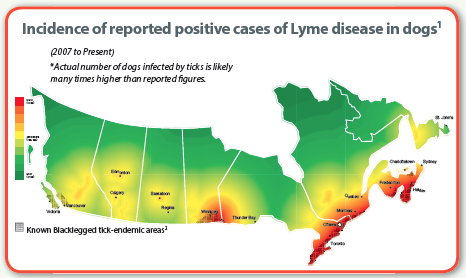 lyme map of canada